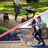 Premium Hands-Free Dog Leash