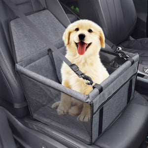 SafeDog Car Seat