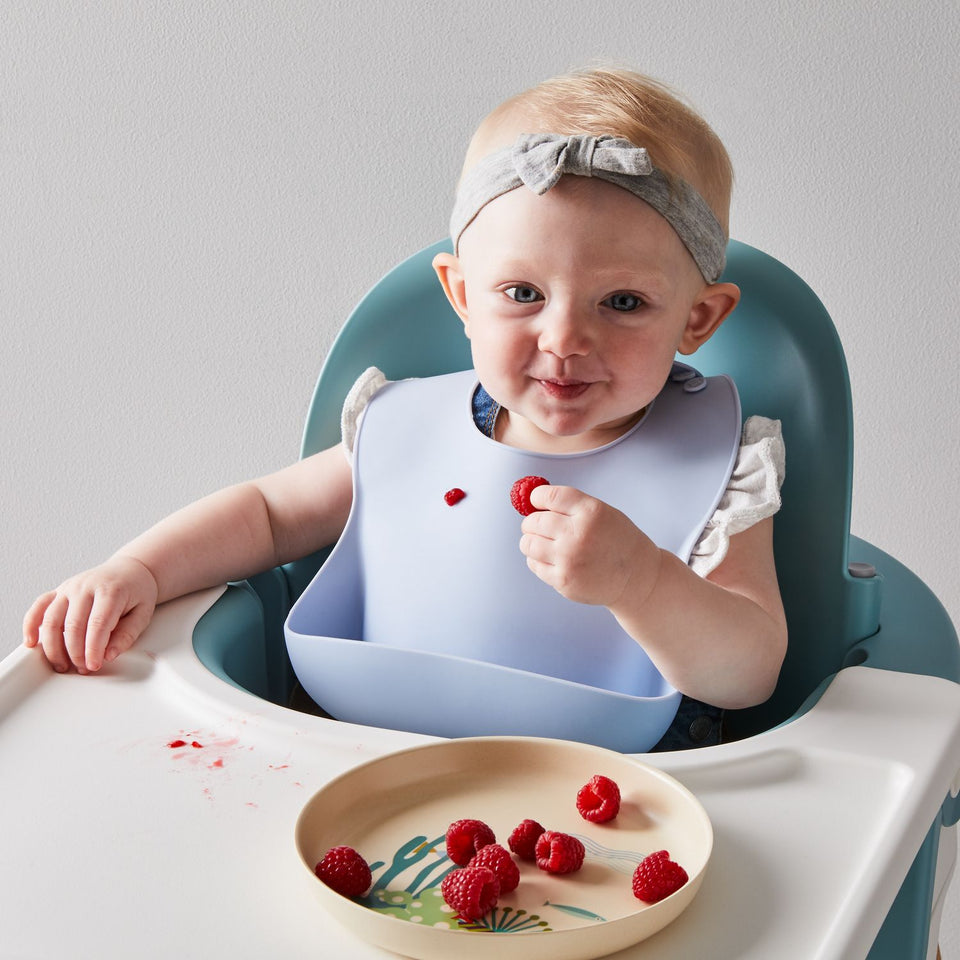 Silicone Baby Bib With Food Catcher Pocket