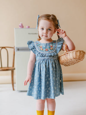 Lynton Dress, Denim Rosa