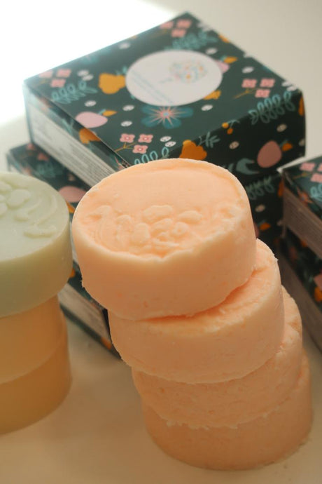 Shampoo and Conditioner Bar Set