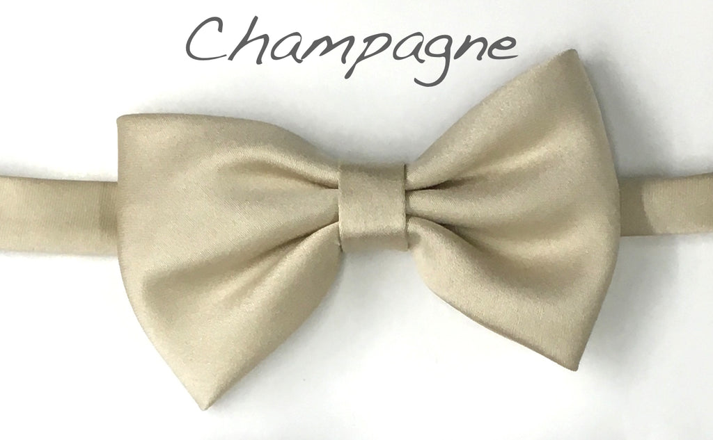 Chmpagne Satin bow tie