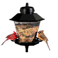 Coach Lamp Bird Feeder w/Pole