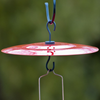 Bird Feeder Weather Guard Red 10 inch