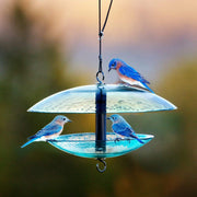 Baffle Dome Glass Bird Feeder Clear