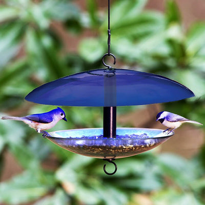 Baffle Dome Glass Bird Feeder Blue