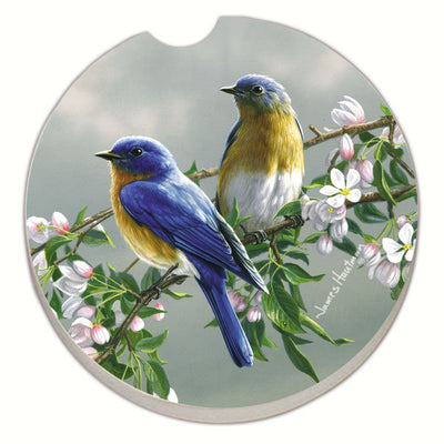 Beautiful Songbirds Bluebirds Car Coaster - Momma's Home Store