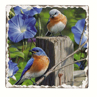 Bluebirds Number 3 Single Tumbled Tile Coaster - Momma's Home Store