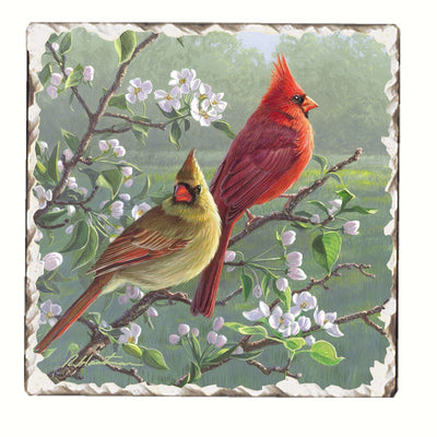 Cardinals Number 1 Single Tumbled Tile Coaster - Momma's Home Store