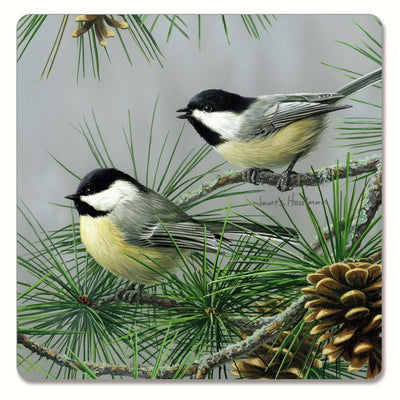 Beautiful Songbirds Hardboard Coasters Set of 4