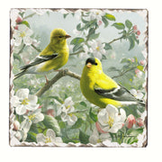 Goldfinches Number 1 Single Tumbled Tile Coaster - Momma's Home Store