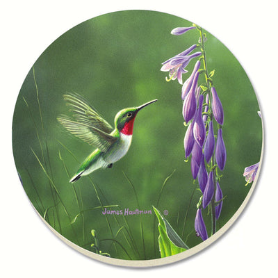 Hummingbird Hosta Coasters Set of 4 - Momma's Home Store