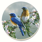 Beautiful Songbirds Bluebirds Coasters Set of 4 - Momma's Home Store