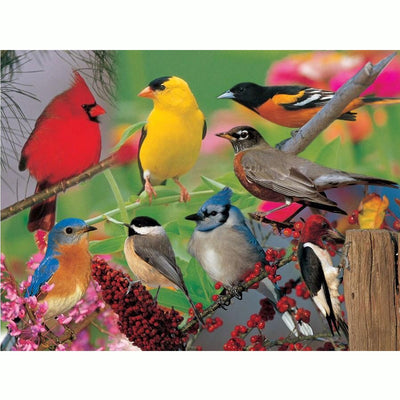 Backyard Birds Jigsaw Puzzle 500 piece