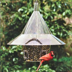 Mandarin Squirrel Proof Bird Feeder - Momma's Home Store