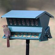 Green Absolute II Bird Feeder w/Pole