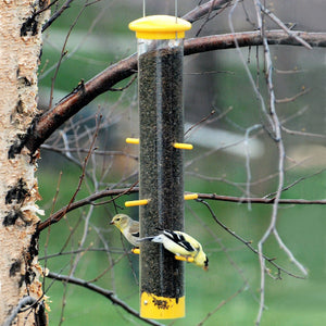 Tails Up Finch Tube Bird Feeder