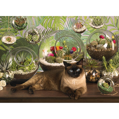 Terrarium Cat 1000 pc Puzzle