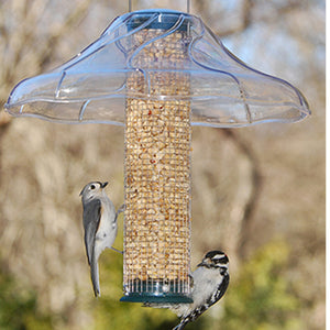 Fancy Swirl Aspects Bird Feeder Dome - Momma's Home Store