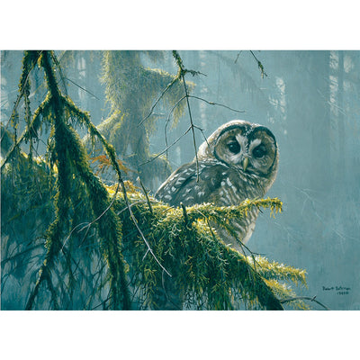 Mossy Branches - Spotted Owl 500 pc Puzzle