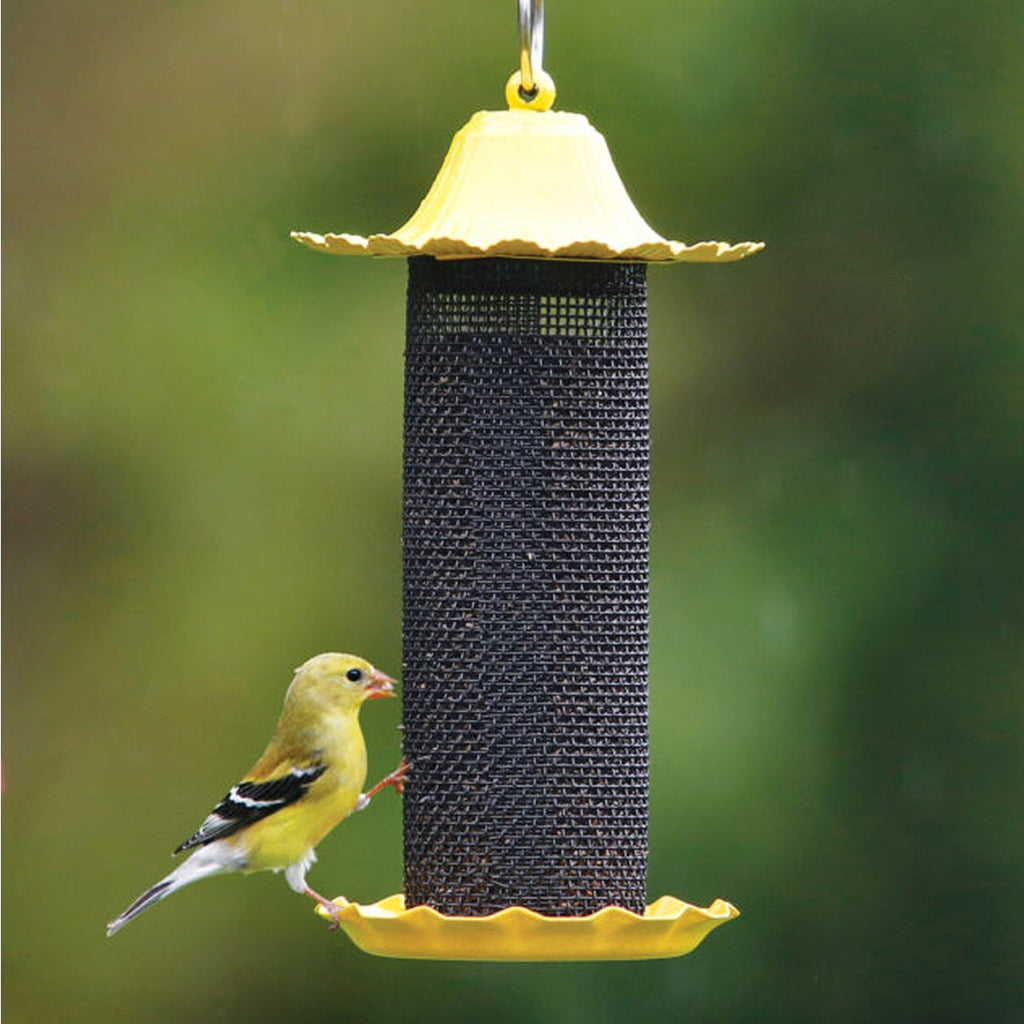 Little Bit Finch Screen Feeder
