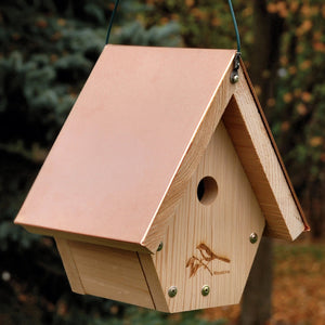 Coppertop Hanging Wren Birdhouse
