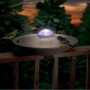 Aurora Water Wiggler (lighted)