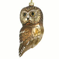 Northern Saw Whet Owl Glass Ornament - Momma's Home Store
