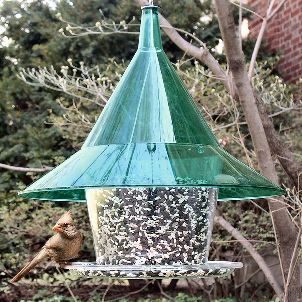 Sky Cafe Squirrel Proof Bird Feeder - Green - Momma's Home Store