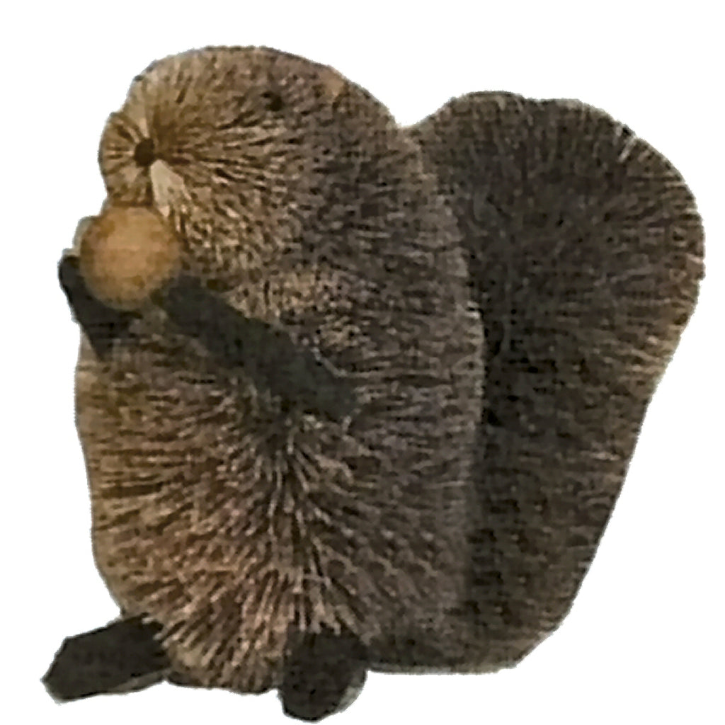 Buri Bristle Squirrel w/Nut 5 inch