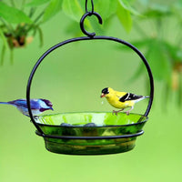Cuban Glass Bird Feeder/Birdbath
