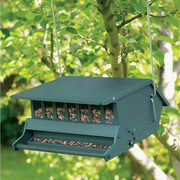 Squirrel Resistant Hopper Bird Feeder
