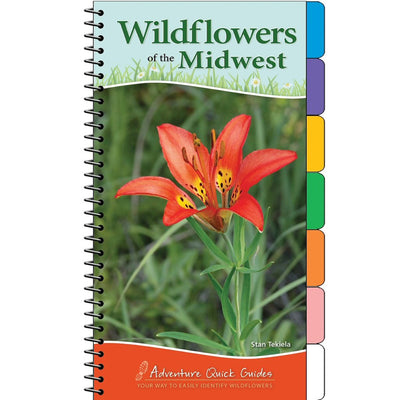 Wildflowers of the Midwest Quick Guide