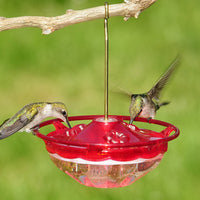 HummBlossom Hummingbird Feeder - Rose