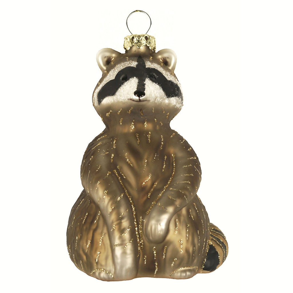 Raccoon Friend Glass Ornament