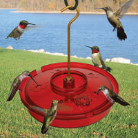 Hummingbird Haven Hummingbird Feeder
