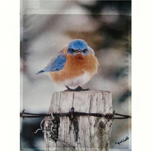 Mad Bluebird Standard House Flag