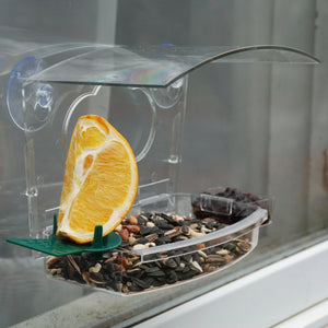 Window Treat Fruit & Seed Bird Feeder