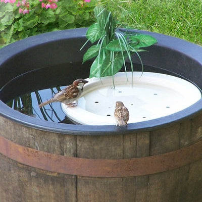 Bird Bath Raft Floating Pan