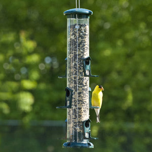 Audubon Mixed Seed Tube Bird Feeder