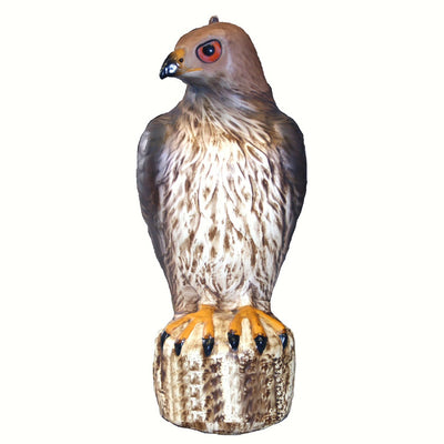 Red Tailed Hawk Decoy Bird Deterrent