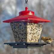 Cafe Hopper Bird Feeder Red/Black