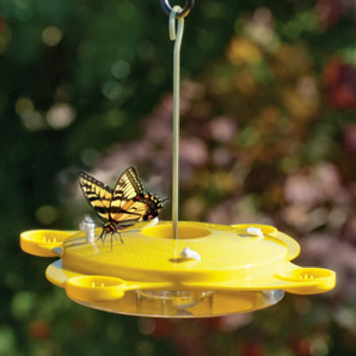 Butterfly Nectar Feeder w/Fruit Dishes