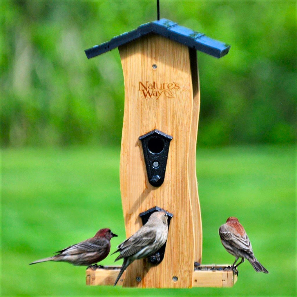 Vertical Wave Bamboo Bird Feeder