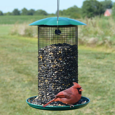 Mammoth Sunflower Seed Bird Feeder Green
