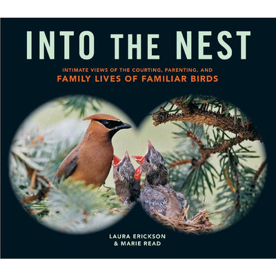 Into The Nest: Family Lives of Birds