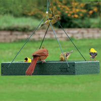Going Green Platform Bird Feeder Large