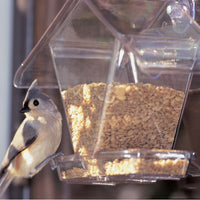 Window Cafe Seed Bird Feeder - Momma's Home Store