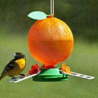 Orange Oriole Feeder - Plastic 40 oz - Momma's Home Store
