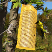 Finch Thistle Sack Bird Feeder Gold